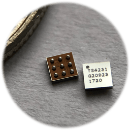 Ts4231 Triad Semiconductor